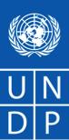 UNDP Logo Blue