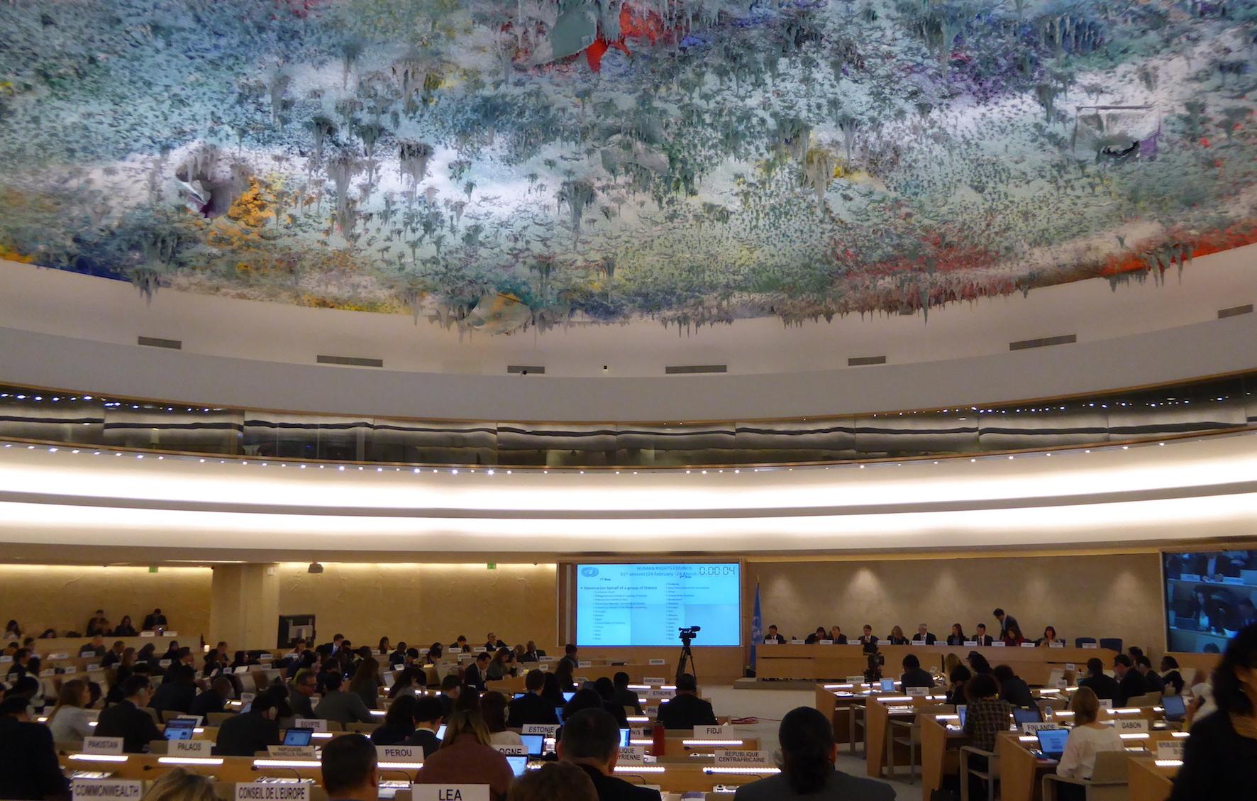 UN Human Rights Council Panel CVF Statement